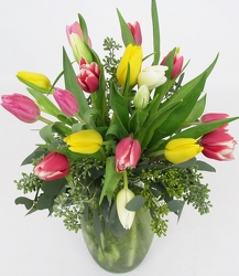 Fresh Cut Tulips from The Colony House, your florist in Shreveport, LA