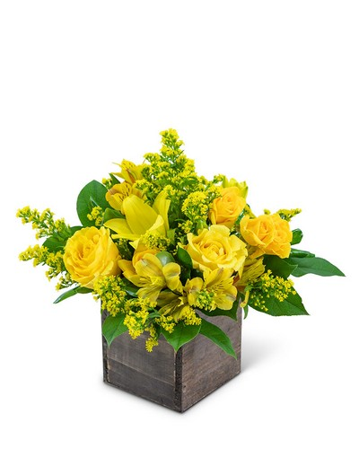 Sweet Honey from The Colony House, your florist in Shreveport, LA
