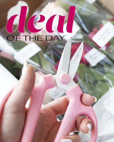 Deal of the Day from The Colony House, your florist in Shreveport, LA