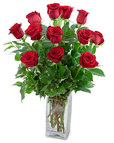 Classic Dozen Red Roses from The Colony House, your florist in Shreveport, LA