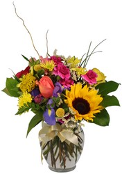 Color Your Day from The Colony House, your florist in Shreveport, LA