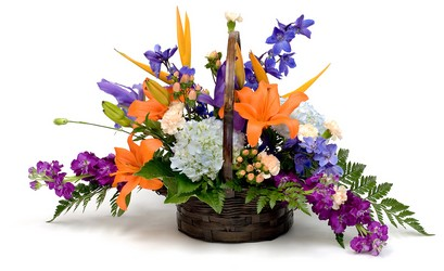 Tropical Vacation from The Colony House, your florist in Shreveport, LA