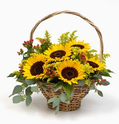 Soak up Summer from The Colony House, your florist in Shreveport, LA