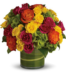 Blossoms in Vogue from The Colony House, your florist in Shreveport, LA