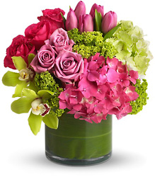 New Sensations from The Colony House, your florist in Shreveport, LA