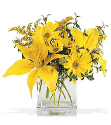 Sunny Day Bouquet from The Colony House, your florist in Shreveport, LA