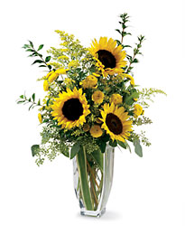 Sunflower Delight from The Colony House, your florist in Shreveport, LA