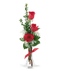 3 Rose Budvase from The Colony House, your florist in Shreveport, LA