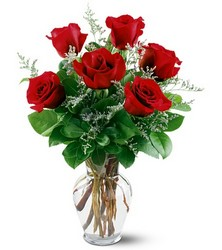 6 Red Roses from The Colony House, your florist in Shreveport, LA